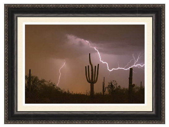 Sonoran Saguaro Southwest Desert Lightning Strike Ready To Hang